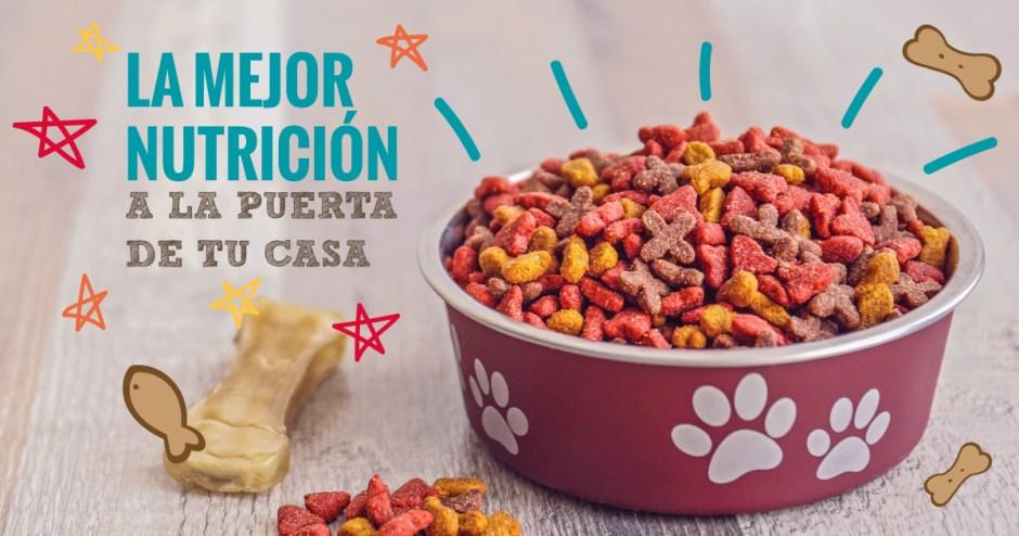 El Perro Azul, Alimento de Calidad Premium a Domicilio