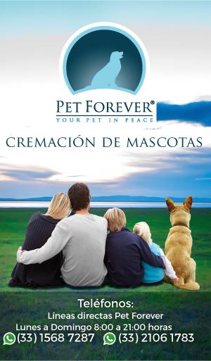Banner Pet Forever Cremación de Mascotas