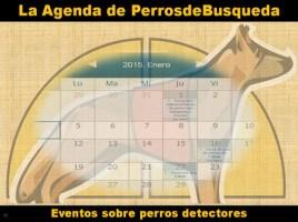 """alt=""""Agenda PerrosdeBusqueda"""""""