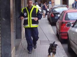 """alt=""""perros detectores dinero Pujol"""""""