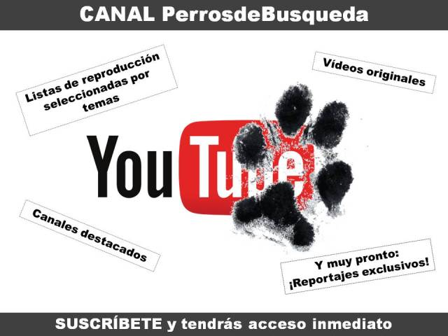 "alt=""Multimedia canal Youtube"""