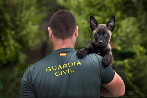 "alt=""Guardia Civil con cachorro"""