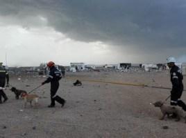 homenaje perros bomberos tras explosión pirotecnia Zaragoza