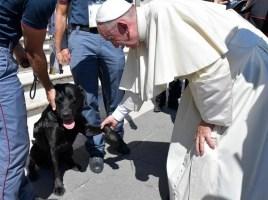 felicitado por el Papa