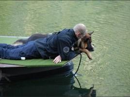 Leer al perro