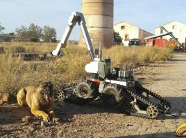 ¿Robots o perros?
