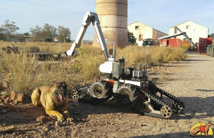 Robots o perros