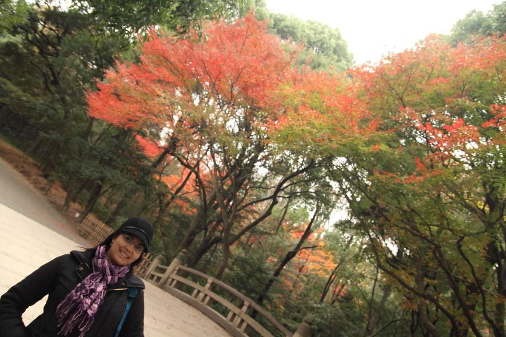 Otoño en el parque Yoyogi