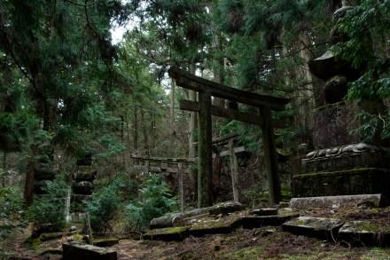 Toriis y tumbas en el cementerio de Okunoin, Koya-san, Japón