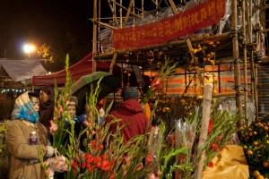 Mercado de flores en la víspera del año nuevo chino, Hong Kong