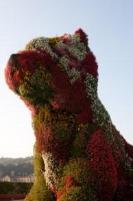 El Puppy de Jeff Koons, Bilbao, España