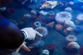 Fotos de la semana Nº 13, marzo-abril 2012