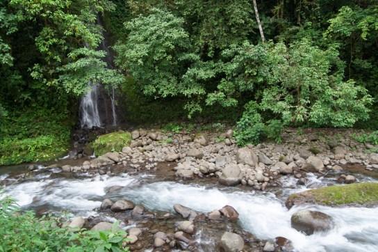 Sábado 1: Un arroyo y una pequeña cascada en el bosque lluvioso tropical de Costa Rica.