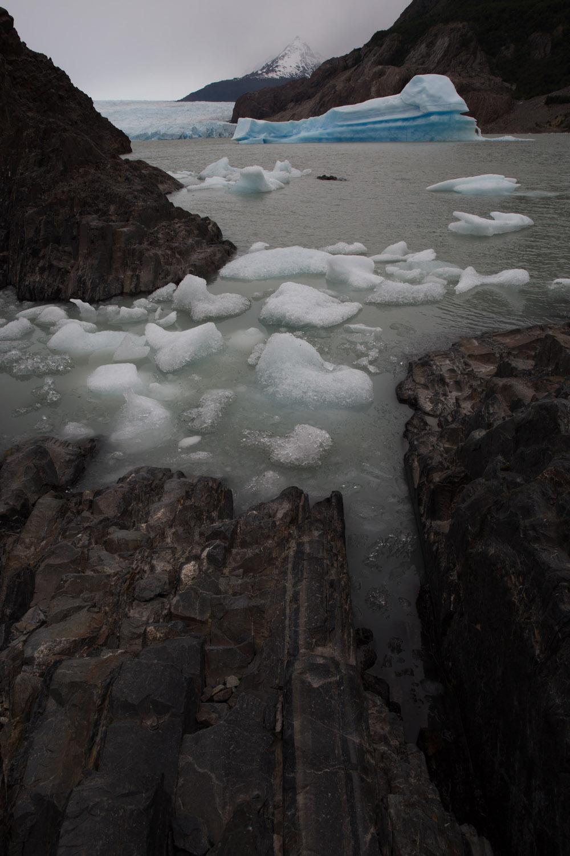 Lago y glaciar Grey, témpanos de hielo y trozos de hielo, Chile