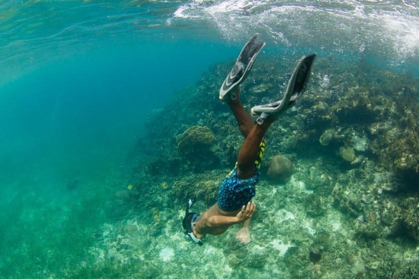 Haciendo snorkel en un arrecife de coral cerca de isla Iguana, archipiélago de Guna Yala o San Blas, Panamá