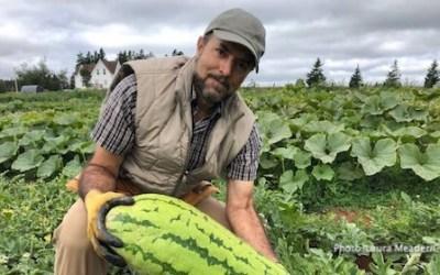 کشاورز موفق ایرانی در کانادا چه میکند؟