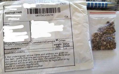 ارسال بسته های مشکوک از چین به آمریکا و کانادا