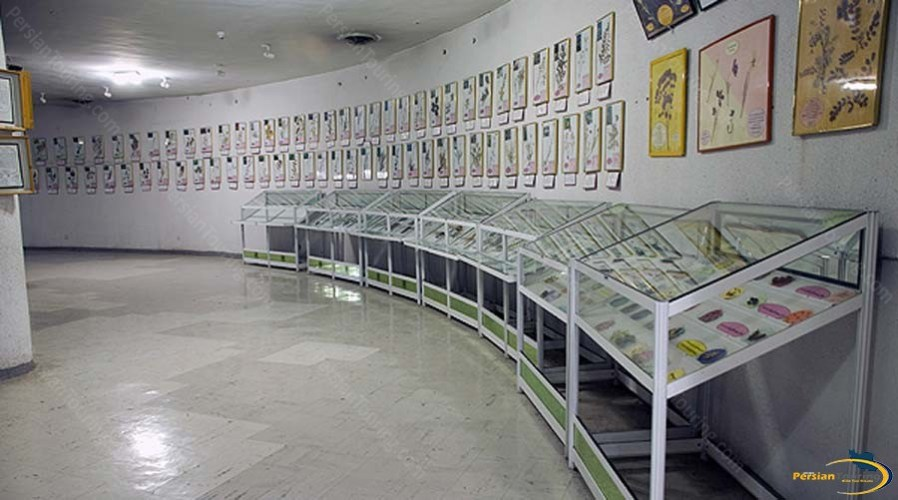 natural-history-and-technology-museum-7
