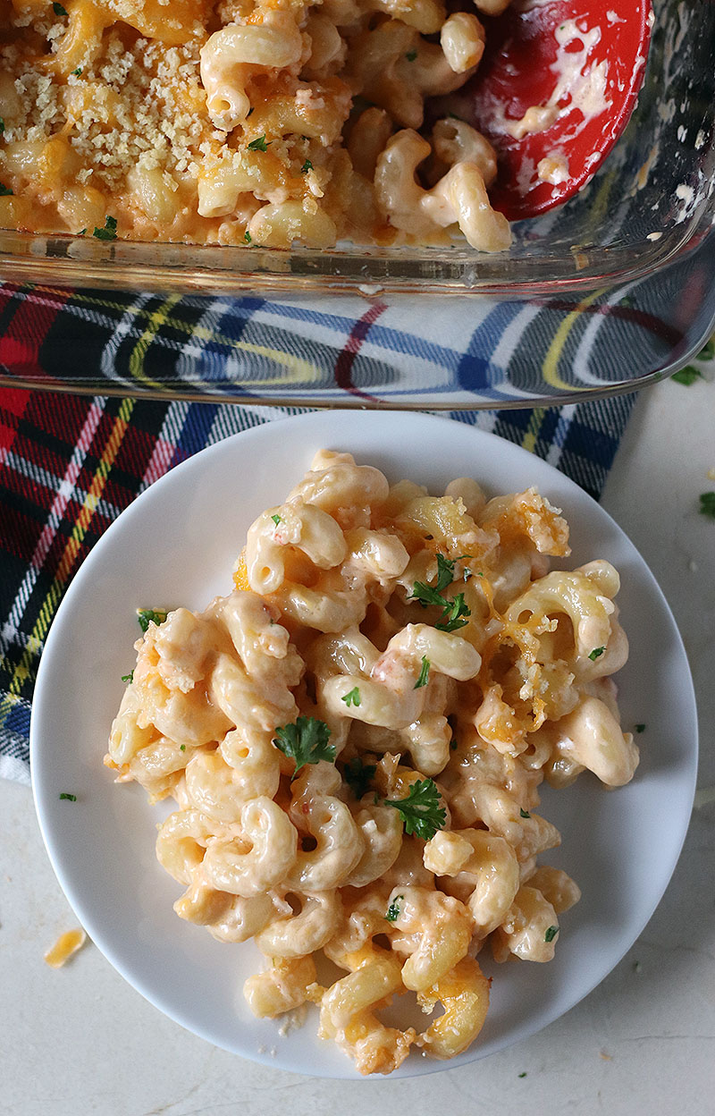 best baked mac n cheese plated on white plate