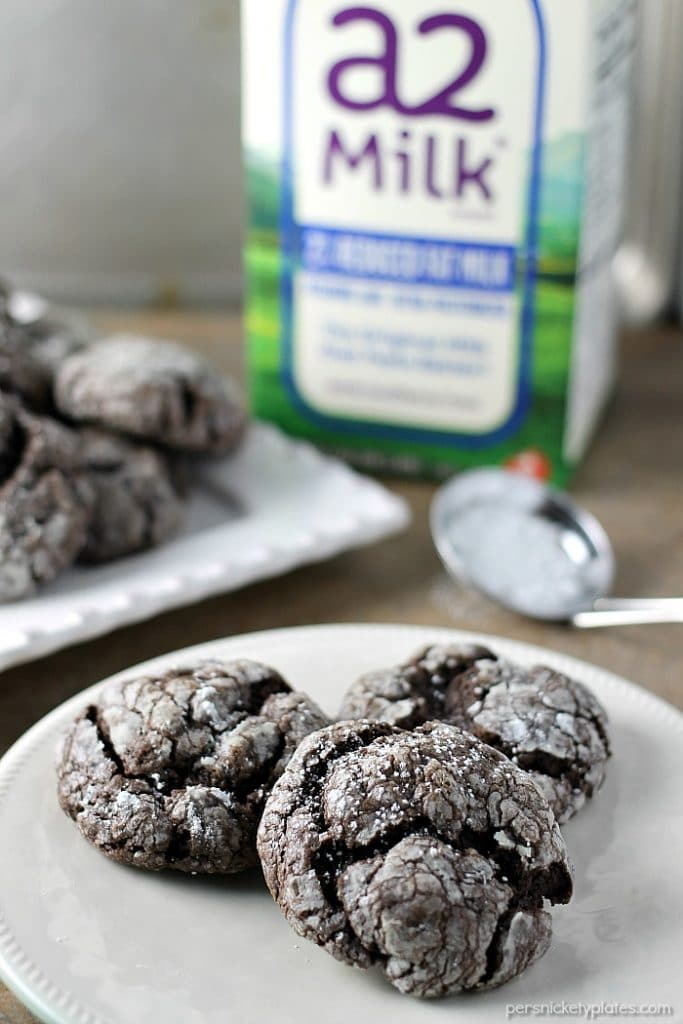 Chocolate Gooey Butter Cookies are light and pillowy and melt in your mouth! At only six ingredients, they just might be your new favorite cookie! Persnickety Plates