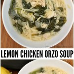 Lemon Chicken Orzo Soup is the perfect light and summery meal. It comes together in just about 30 minutes and it's pretty healthy! | www.persnicketyplates.com