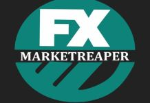 fx market reaper review