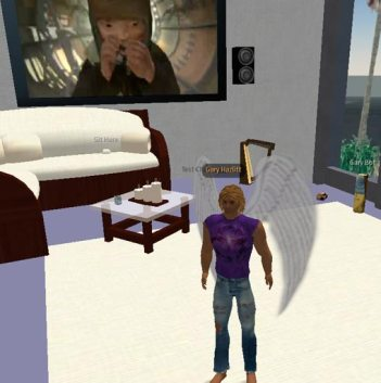 Second Life ARG - streaming media