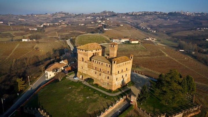 """La collezione ampelografica di Grinzane Cavour, apre le porte al pubblico dei suoi 500 vitigni. Capofila del Progetto """"GrapeRescue"""" per la salvaguardia dei vitigni minori."""