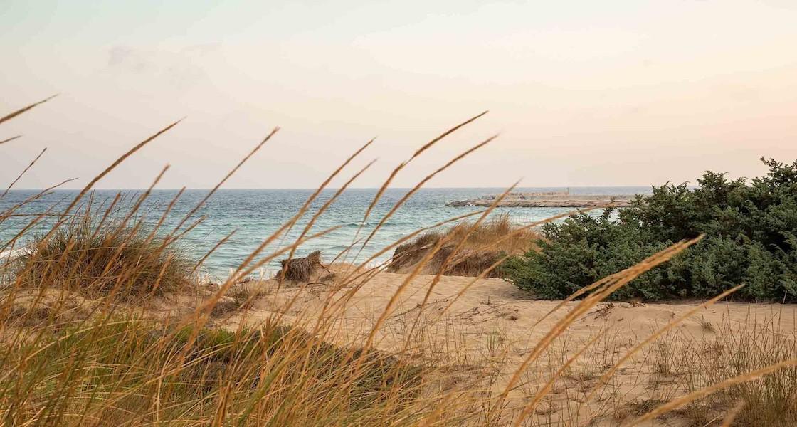L'estate pugliese Tra le Torri del Primitivo di Manduria
