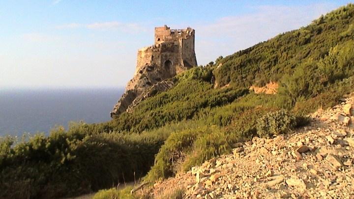 La suggestiva isola di Gorgona