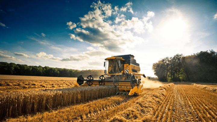 Agricoltura italiana prima in Europa ma calano valore aggiunto e occupazione