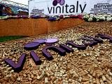 54ª edizione Vinitaly posticipata al 2022 – Confermata Opera Wine