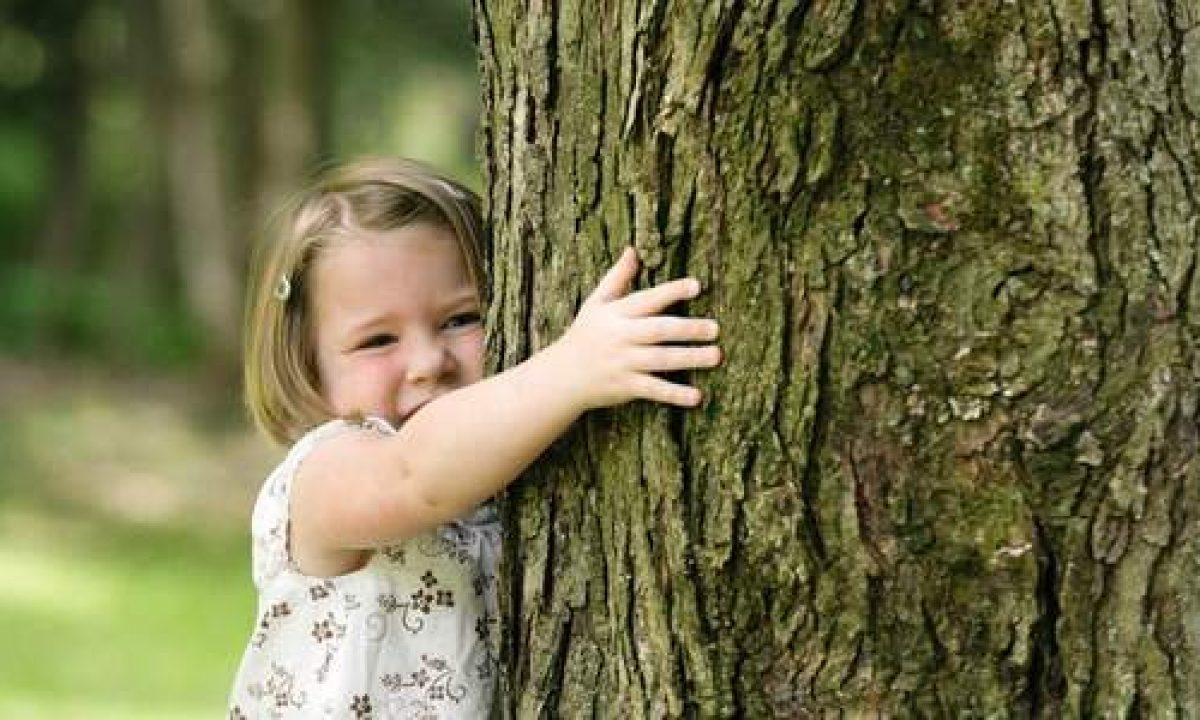 È scientificamente provato che il contatto con gli alberi produca effetti benefici per il corpo e la mente