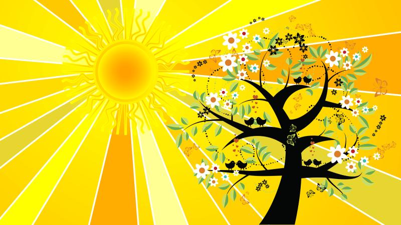 Il magico solstizio d'estate