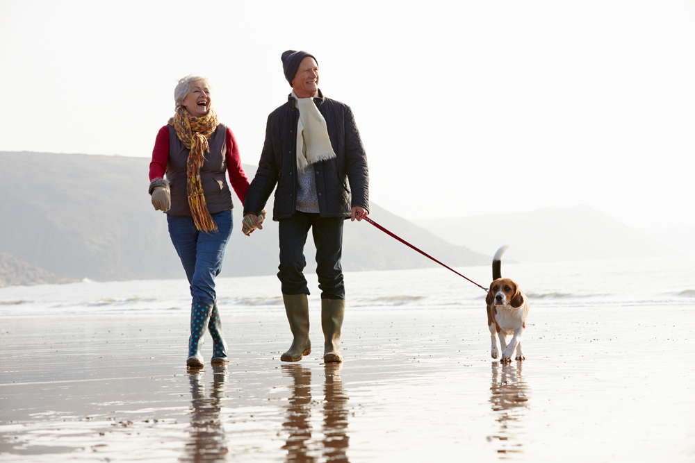 A healthy, happy couple finds time to exercise and lose weight as they walk their dog on the beach.