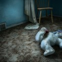 Those Who Were Left Behind - A forgotten soft toy on the floor of an abandoned house