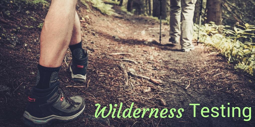 Wilderness Testing