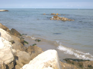 foce fiume tordino a Cologna