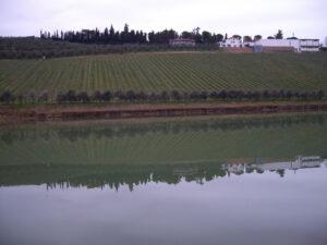 Lago-Nicodemi-1