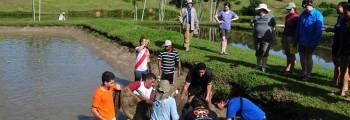 Intercâmbio de Estudantes: <br>Fazenda Escola de Castanhal