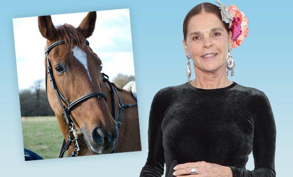 Help Ali MacGraw End Horse Transport & Slaughter   PETA