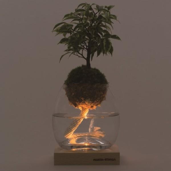 Torch Plant Light Botanical Candle