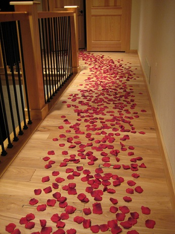 Romance Package Of 1000 Petals