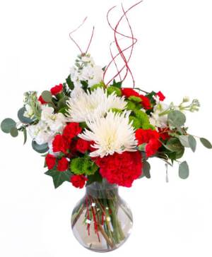 Jolly Red & White Flowers