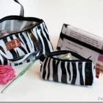 Find Your Perfect Project Bag: Review of the Chic-a Triad