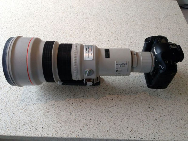 For Sale: A Canon 1D Mark III and 600mm f/4 That Took a Saltwater Bath submergedcanon1d 4