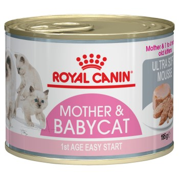 ROYAL CANIN F/L WET BABYCAT SLAB 12x195G CAN