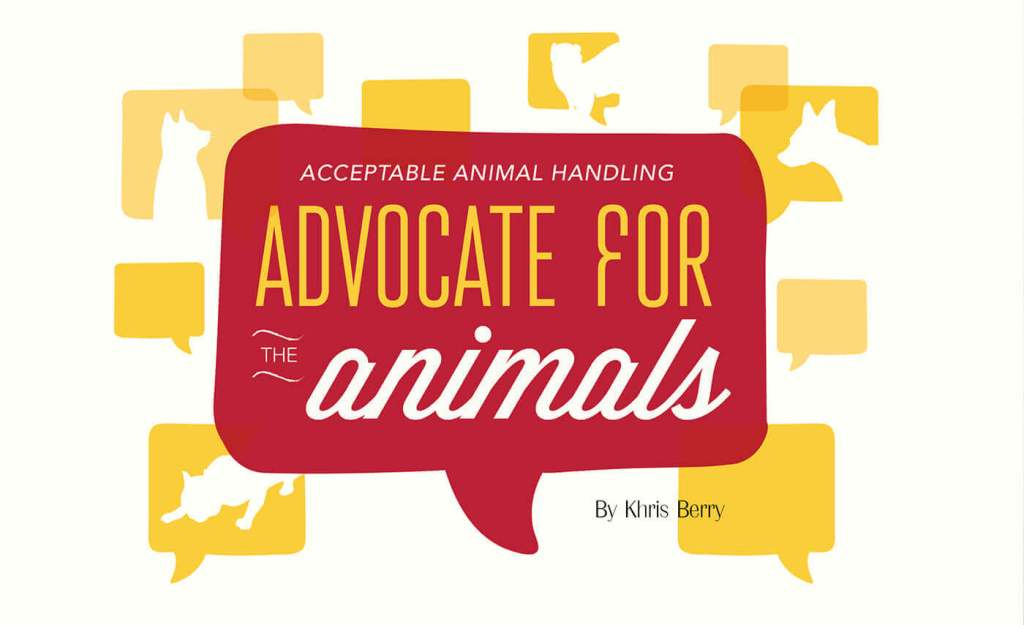 Acceptable Animal Handling: Advocate For The Animals