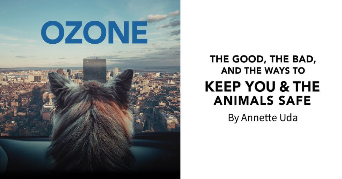 Ozone: The Good, the Bad, and the Ways to Keep You & the