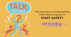 Talk the Talk: Understanding Canine Body Language for Staff Safety